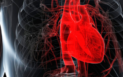 Heart Health, Homocysteine, And Your Genes